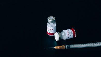 Photo of Torlak je dopremio prve doze vakcina protiv COVID-a u ZZJZ Pirot