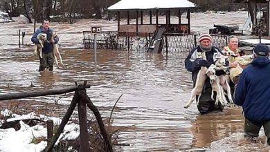 Photo of Rsovci: Nabujala Visočica poplavila štale, dvorišta kuća u nižem delu sela. Meštani