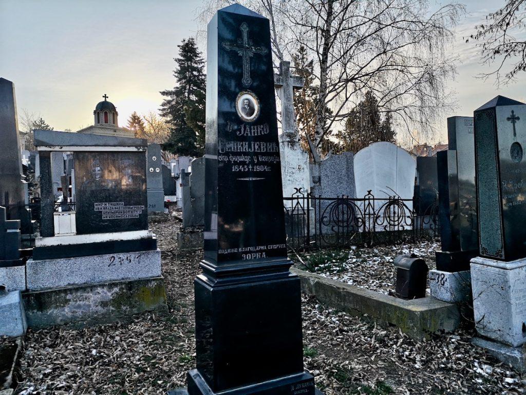spomenik sjenkjeviču na pirotskom Tijabarskom groblju