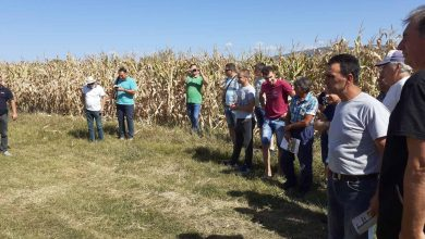 Photo of Bolji uslovi za rad Ogledne farme Poljoprivredne službe u Pirotu
