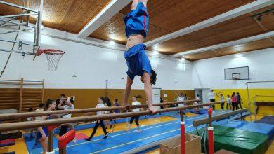 Photo of U godini jubileja pirotski gimnastičari očekuju zapažene takmičarske rezultate