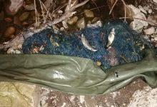 """Photo of Hitrom intervencijom ribočuvarske službe Parka prirode """"Stara planina"""" , sprečena je ribokrađa i uginuće riba i strogo zaštićene vrste rečnih rakova u reci Visočici"""